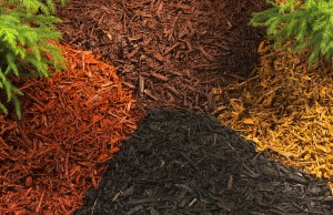 Mulch Landscape Supply